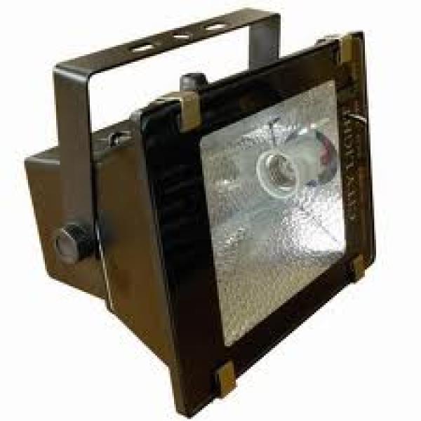 Đèn pha tỏa Philip 220V- 1000W Philip - 1000W
